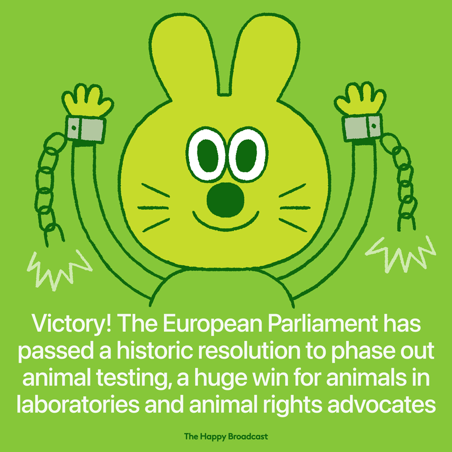 EU Parliament voted to phase out animal testing