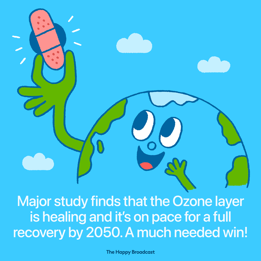 The ozone is on the path to recovery
